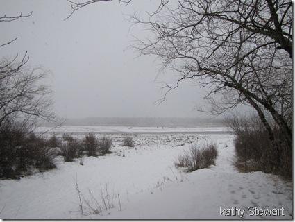 Snowing - again