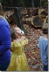 fall festival (4)