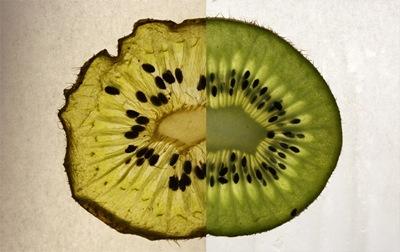 kiwi03