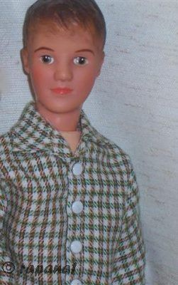 Sindy Paul Pedigree doll 1960s