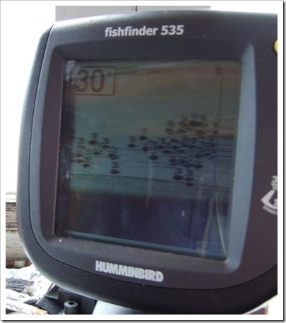 DSCF0740