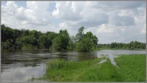 Budziarze powódź 2010