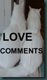 LOVECOMMENTS