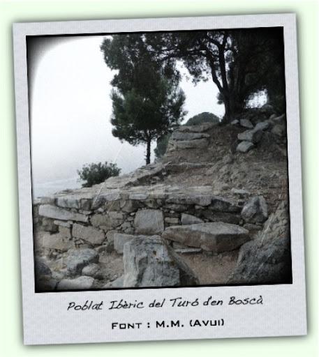 Fotografia del Poblat Ibèric del Turó d'en Boscà