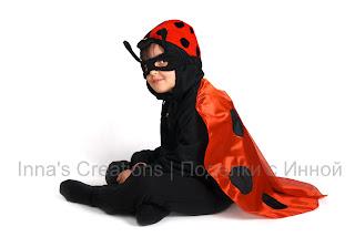 Ladybug costume