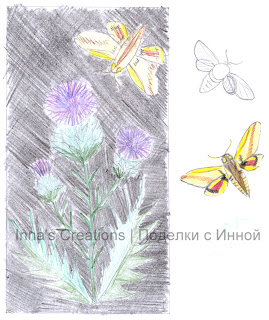 Thistle and hawk moth, sketch