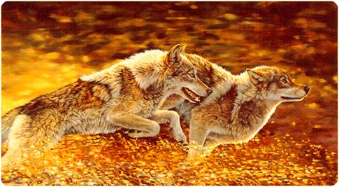 Wolf_mates
