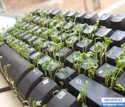 Green Keyboard