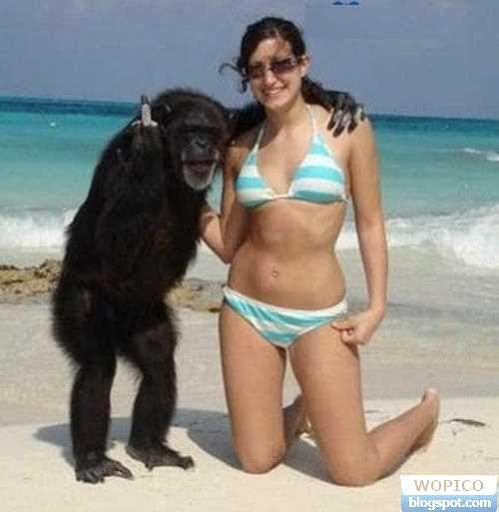 Lucky Chimp