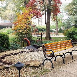 Park Bench in Fall. by Marilyn Bass - City,  Street & Park  City Parks ( arkansas photographer, park benches, park, parks, park bench, arkansas,  )