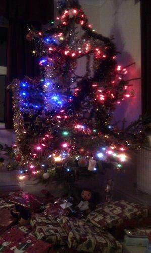 http://lh4.ggpht.com/_7ODftPSZPsY/TSW1irbQKkI/AAAAAAAACyA/RbGGmLfuLqY/tree.jpg