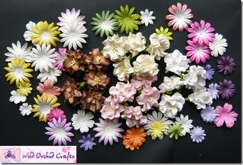 gardenia blogcandy