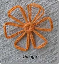 orangedaisy