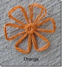 orangedaisy