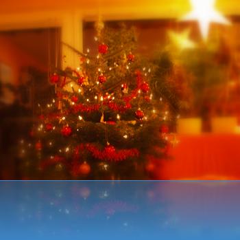 Der Baum 2010 in unserem Wohnzimmer