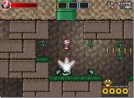 Toad Strikes Back free game (13)
