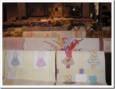 Dexter & Midland quilt show 2010 021
