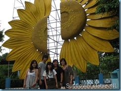Sunflower Garden (215)