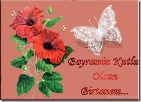 bayram30