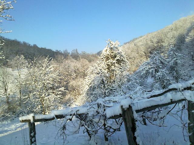 Iarna in satul meu III