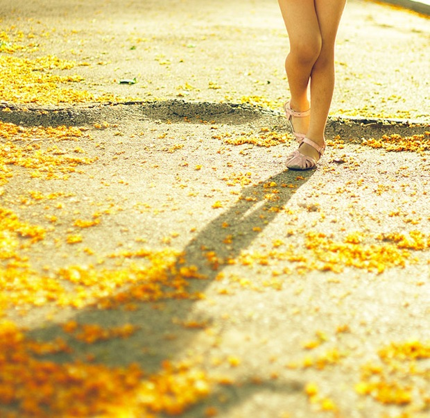 Beautiful Girl walks through autumn