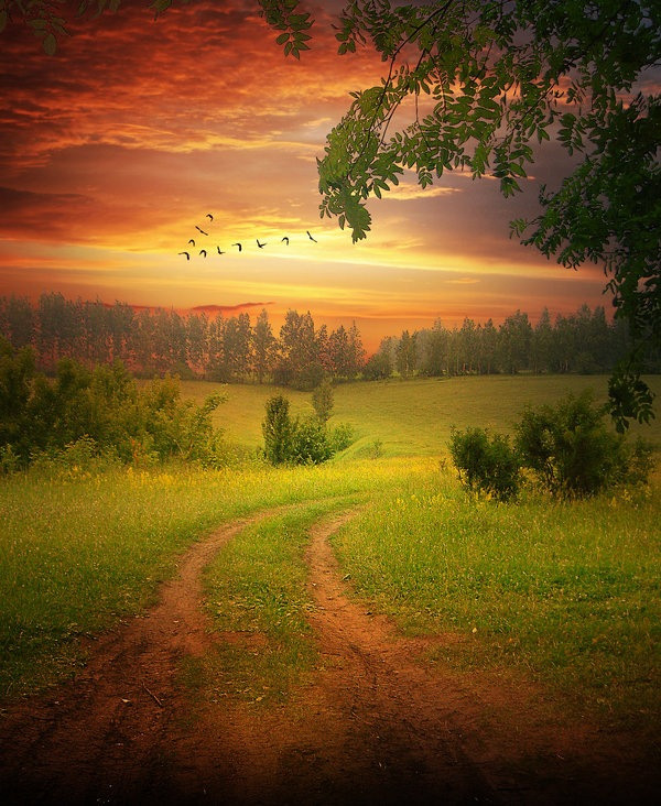 Landscape Photo-manipulation-photoshop