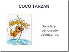 tarzam