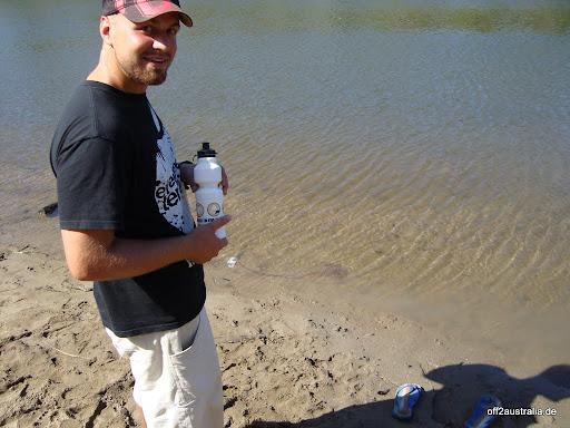 Wer findet den Stingray (er ist ziemlich nah am Ufer)