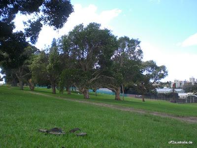 Der Park neben unserem Hostel