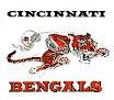 More About Cincinati Bengals