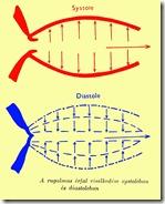 Systole&Diastole_1Color