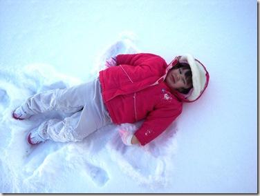 snowdayjan 049