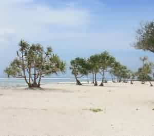 Gili Trawangan, Where Serenity Meets Beauty