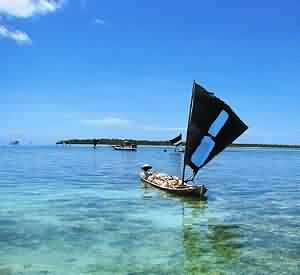 The Gorgeous Wakatobi