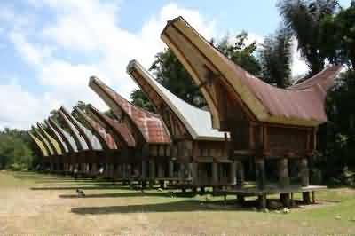 Tongkonan, Toraja Traditional House