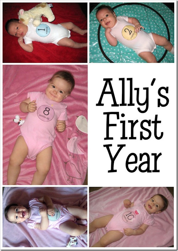 Ally's First Year