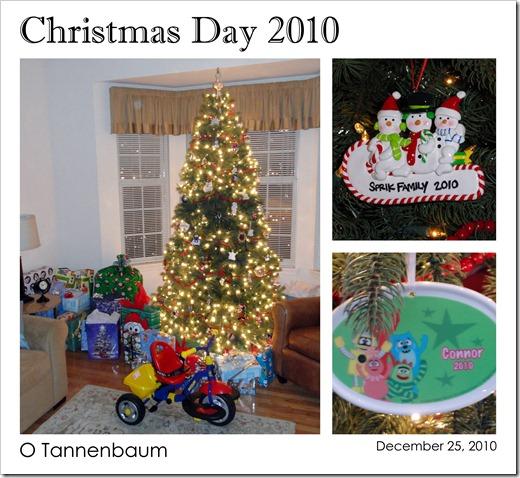 Christmas Day 2010 - O Tannenbaum - 12.25.10