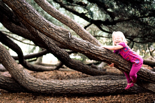 treem (1 of 1)