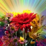 Flower_3981.jpg