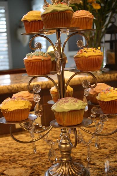 Cupcakes 049