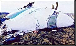 _718307_fuselage300