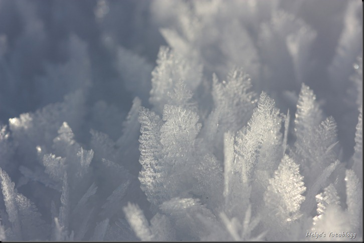 frost03_filtered