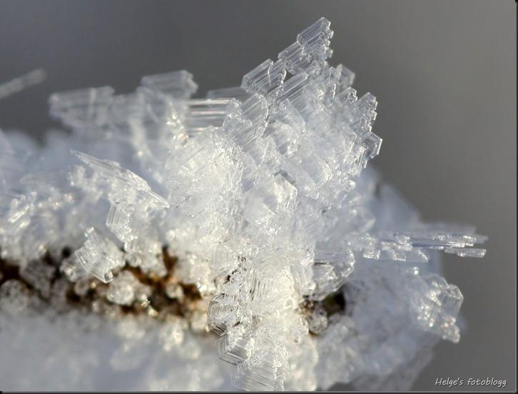 frost02_beskjært
