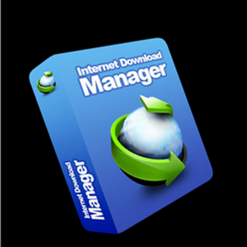 Internet download manager 6.07 build 12 full crack