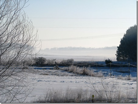 wintermorningfog
