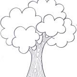 Árbol 3.jpg