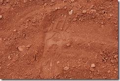 dinasaur tracks 096