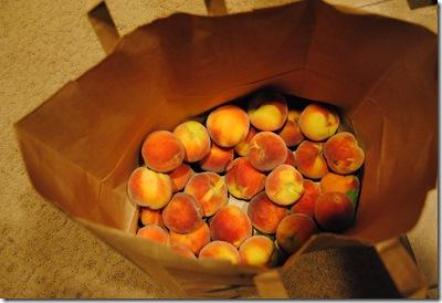 peach pie 008