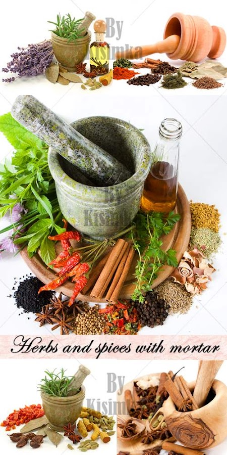 Stock Photo: Herbs and spices with mortar