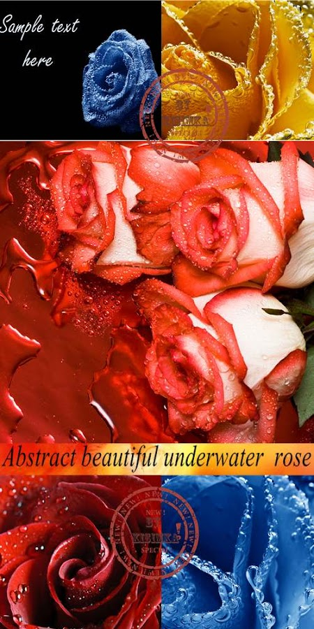 Stock Photo: Abstract beautiful underwater rose